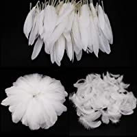 Mwoot White Feathers Plumas de Ganso, 250pcs Blanco