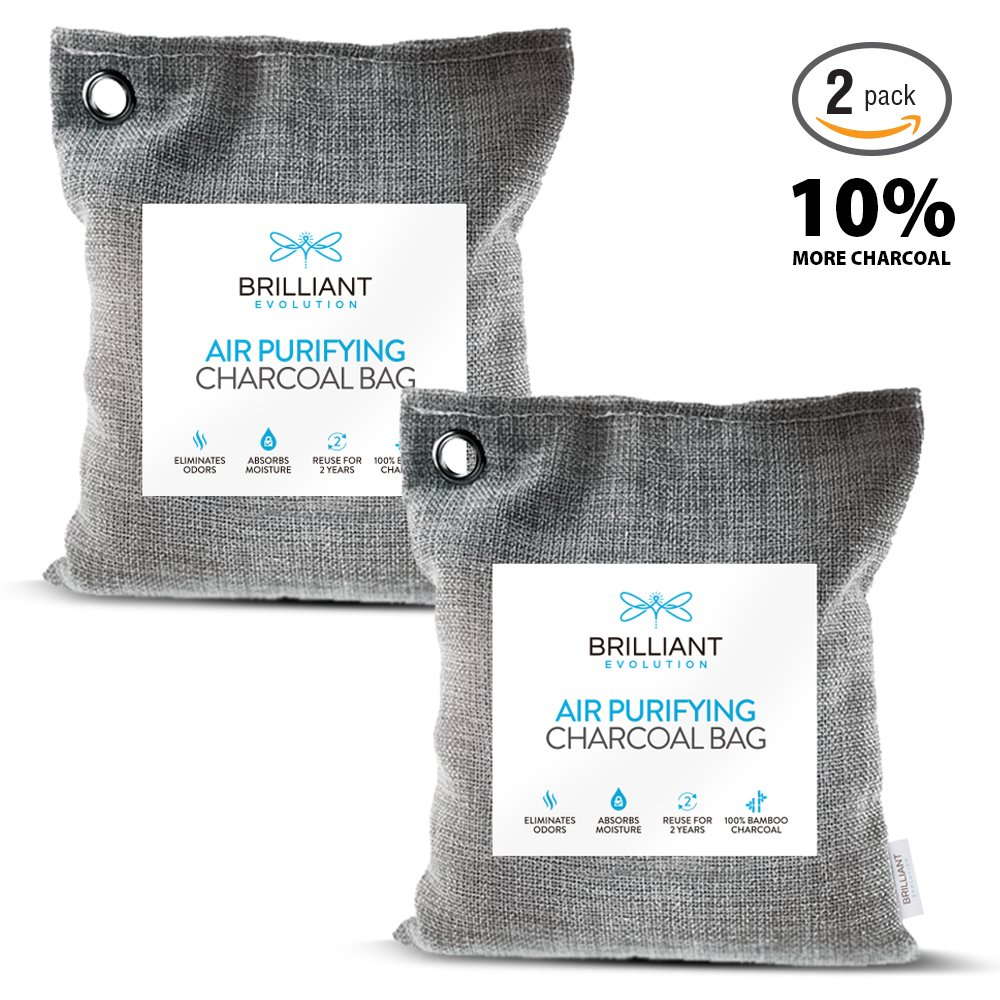Brilliant Evolution BRRC204 Natural Bamboo Charcoal Air Purifying Bag, Odor Eliminator and Air Freshener for Cars, Closets, Bathrooms, Pet Areas and RV, 2 Pack (2 Bamboo Charcoal Bags), 220G London Johnson