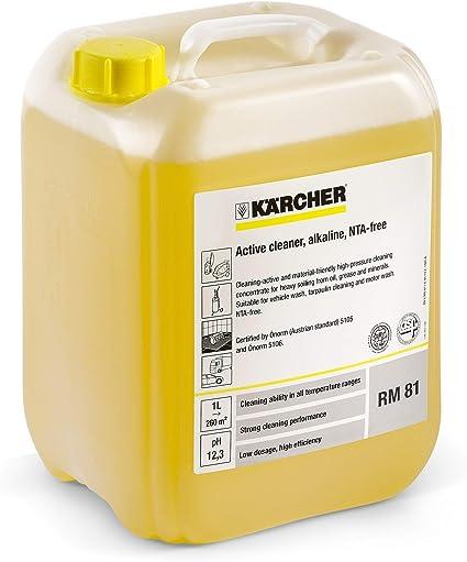 Aktivreiniger Rm 81 Asf Inhalt Liter 10 0 Garten