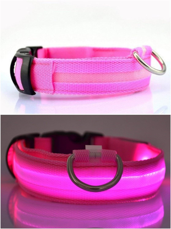 Collier USB pour chien à LED rechargeable (EXTRA GRAND - XL, NOIR) NEO+