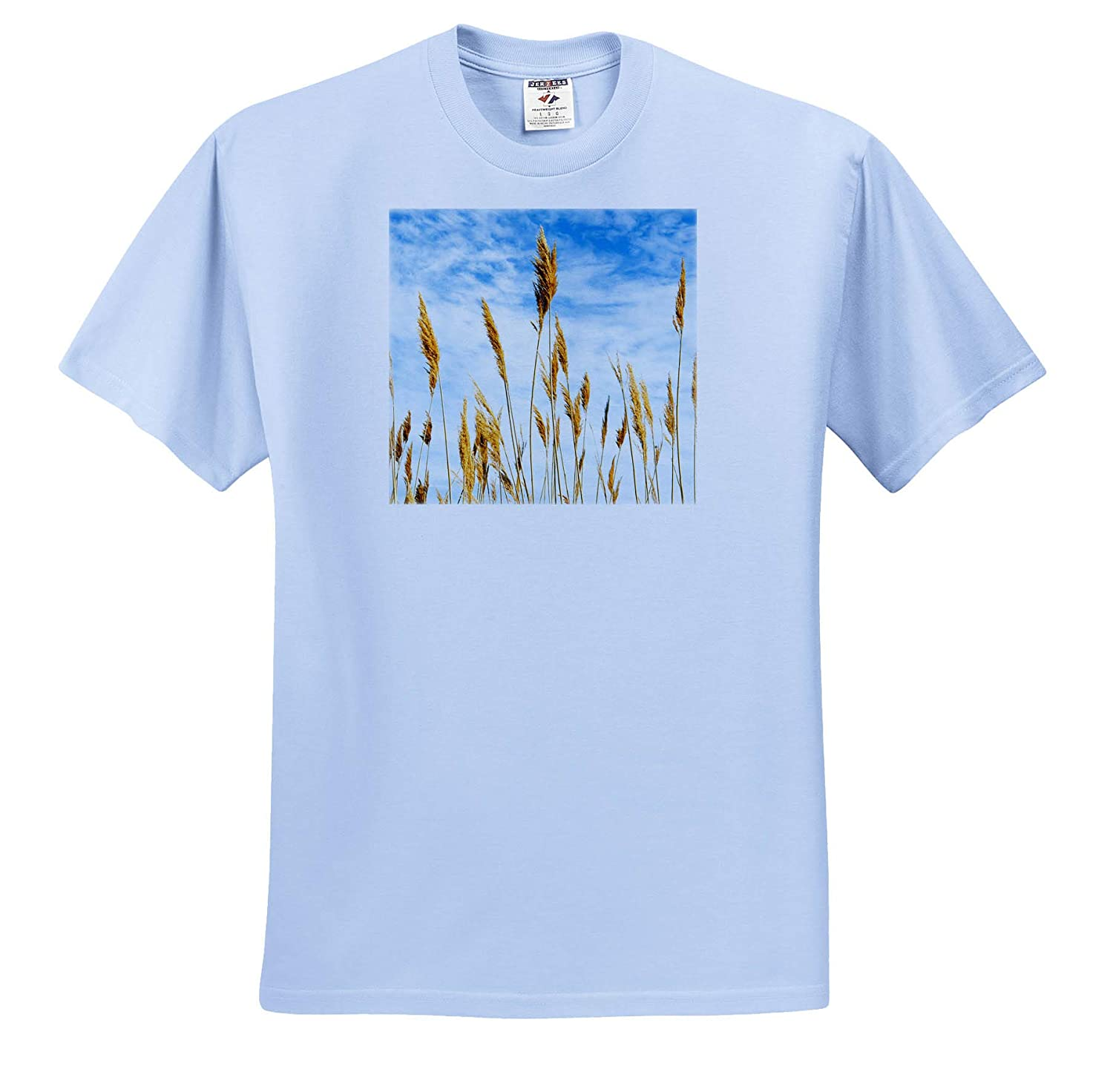 Wheat Blowing in The Wind 3dRose Danita Delimont Agriculture Adult T-Shirt XL ts/_312584