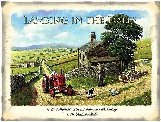 Walsh, Kevin Farm Lane Nostalgie Cartel de chapa - Tamaño 70 ...