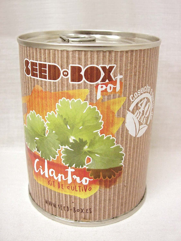 Pocket Garden SeedBox POT - Cilantro: Amazon.es: Hogar