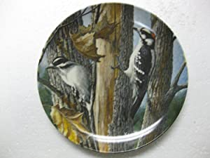 "Edwin M. Knowles-The Downy Woodpecker by Kevin Daniel-9th Issue In The Encyclopedia Britannica Birds Of Your Garden Collection- 8.5"" Diameter"