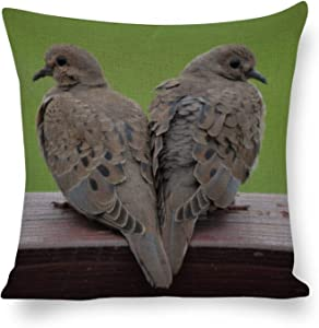 Tamengi Mourning Doves Canvas Throw Pillow Covers Cases 16''×16'', for Home Sofa Car Outdoor Decor Cushion Cover, Square Pillowcase Housewarming Gift