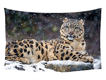 Amazon Com 60x40 Inches Wall Tapestry Snow Leopard Snow Wall