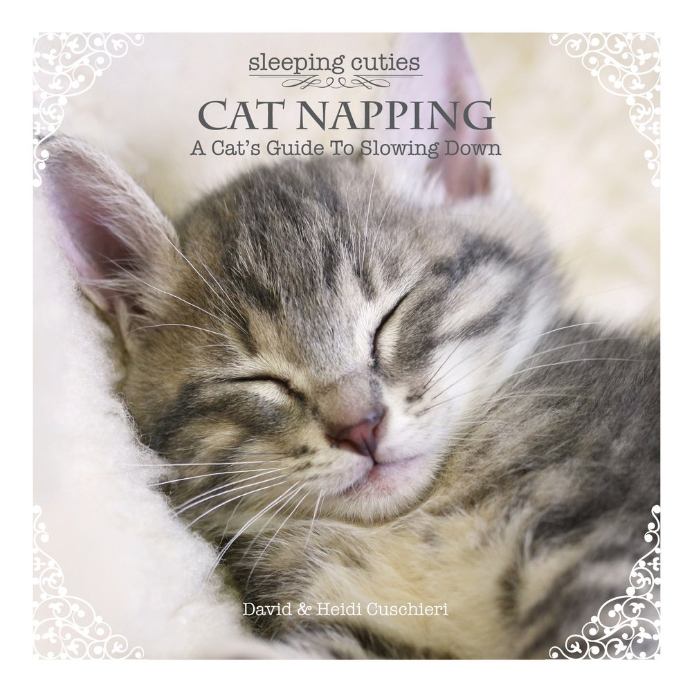 Download Cat Napping: A Cat's Guide to Slowing Down (Sleeping Cuties) PDF