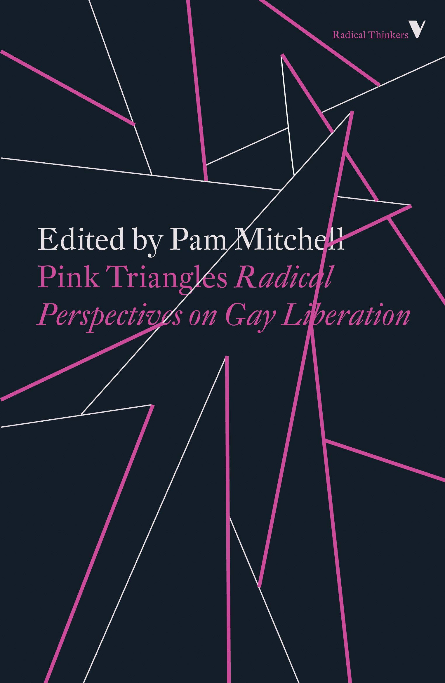 Pink Triangles: Radical Perspectives on Gay Liberation Paperback – October  2, 2018