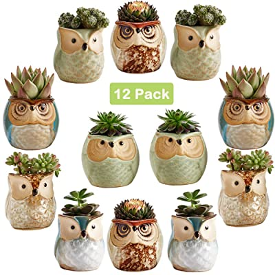 Sun-E 2.5 Inch Owl Pot Ceramic Flowing Glaze Base Serial Set Succulent Plant Pot Cactus Plant Pot Flower Pot Container Planter Bonsai Pots with A Hole Perfect Gift Idea 12 in Set: Garden & Outdoor