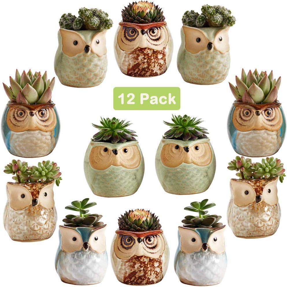 Sun-E 2.5 Inch Owl Pot Ceramic Flowing Glaze Base Serial Set Succulent Plant Pot Cactus Plant Pot Flower Pot Container Planter Bonsai Pots with A Hole Idea 12 in Set