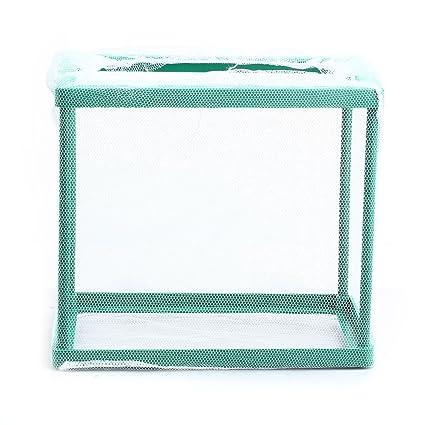 FACILLA®Recipiente Tanque de Aislamiento Verde Plástico para Peces Acuario Pecera