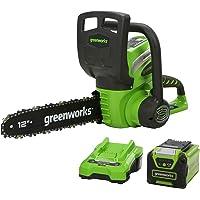 Greenworks Motosierra con mango batería G40CS30K2 (Li-Ion 40V 4,3 m/s velocidad de cadena 30cm longitud de espada 120ml…