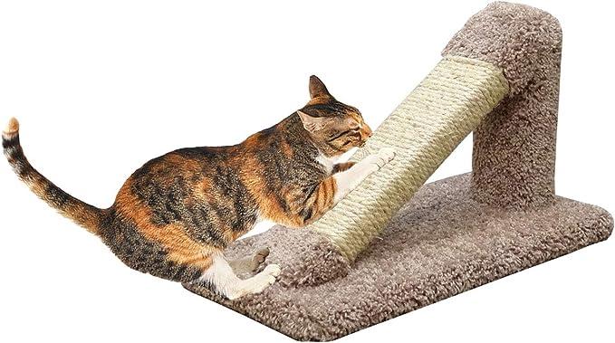 Dise/ño Duradero Y Reversible Rascador para Gatos De Cart/ón Rascador para Gatos con Texturas De Rasgu/ño De Primera Calidad Cart/ón Rascador Ovalado para Gatos ANANAN Casa De Gato