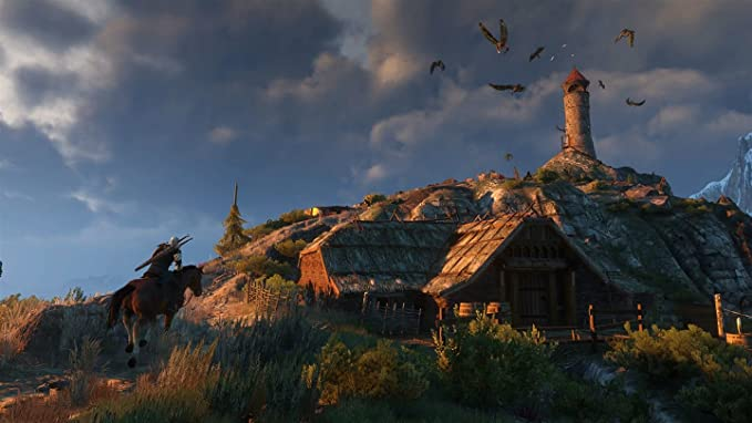Microsoft The Witcher 3: Wild Hunt - Game of the Year Edition Xbox ...