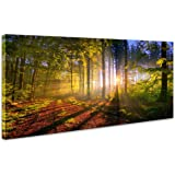 JLXart Wall Art Decor Forest Modern Canvas Wall Art The Picture For Home  Decoration Office Green