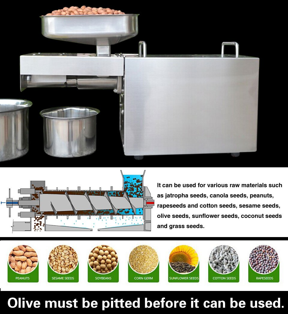 Stainless Steel Automatic Oil Press Machine for Nuts Seeds Oil Presser Pressing Machine by CGOLDENWALL