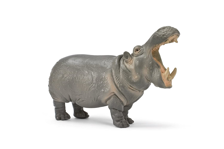 Amazon.com: Schleich Hippo: Toys & Games