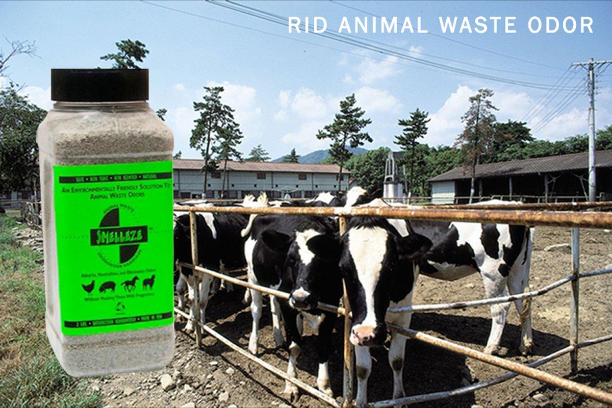 SMELLEZE Natural Animal Waste Odor Removal Deodorizer: 50 lb. Granules Rid Feces & Urine Stench 2