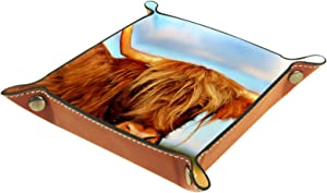 MUOOUM Scottish Highland Cow in Field, Open Home Storage Bins Jewelry Tray Valet Tray Leather Catchall Tray for Home Office