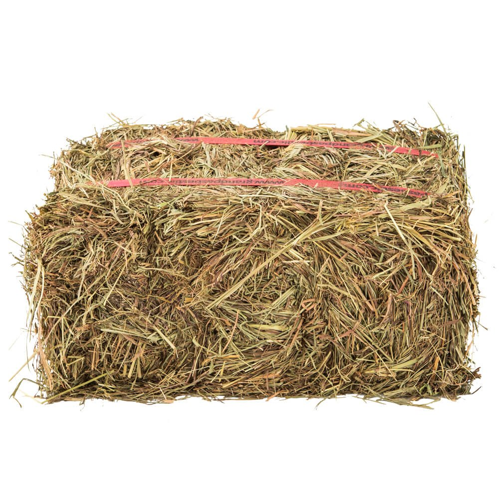 Grandpa's Best Prairie Hay Bale, 10 Lbs by Grandpa's Best