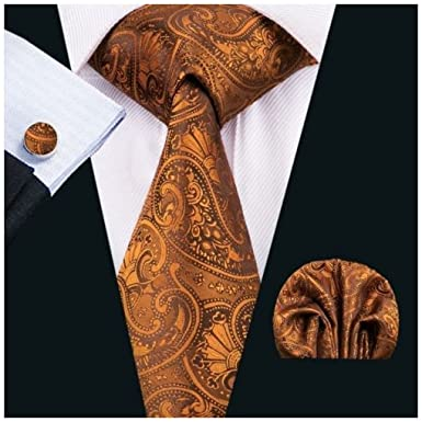 03384f25196c4 Image Unavailable. Image not available for. Colour: Bronze Paisley Silk Tie  ...