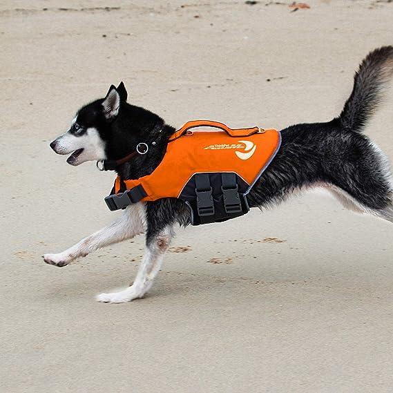 Chaleco Salvavidas Perro Para Mascota salvavidas flotabilidad Ayuda nuevo dispositivo de flotación de Varios Tamaños