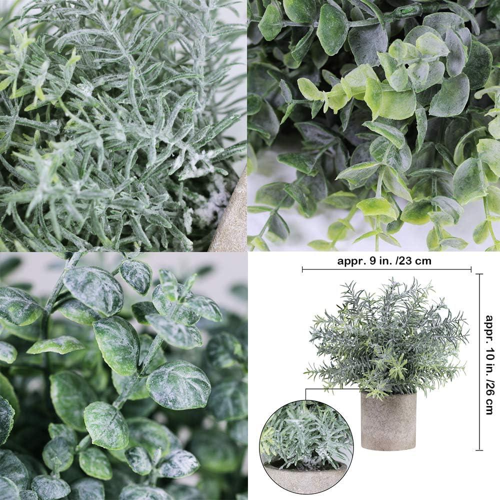 B/üro Raum-Dekoration k/ünstliche Rosmarin-Pflanze f/ür Zuhause Winlyn Set von 3 k/ünstlichen Eukalyptuspflanzen aus Kunststoff Schreibtisch Dusche
