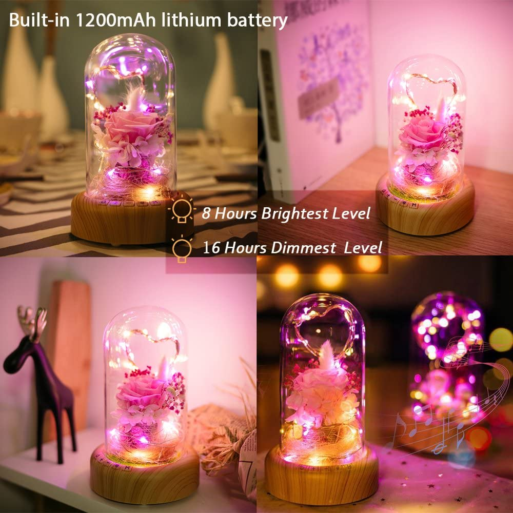 Real Enchanted Rose in Glass Dome Blue Eternal Flowers Rose Gift for Her on Thanksgiving Day Birthday Preserved Rose Flower Night Light with Bluetooth Speaker SWEETIME Rose Lamp