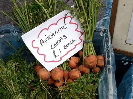 Carrot Seeds Parisian Carrot Vegetable Seeds 500 BULK SEEDS