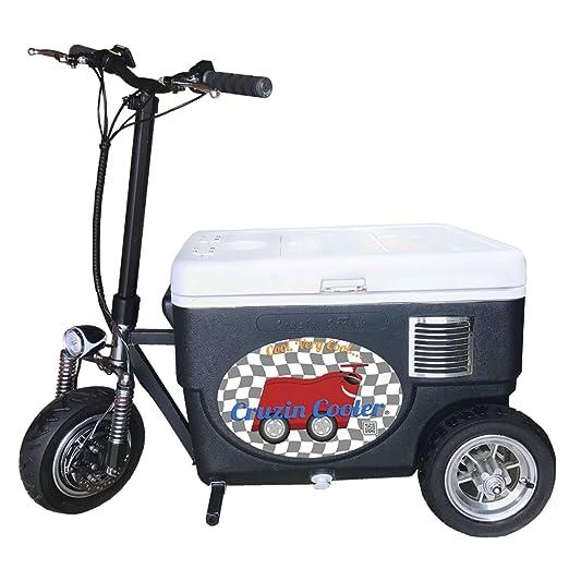Cruzin Cooler CZ-HB Sport - Patinete motorizado para Hielo ...