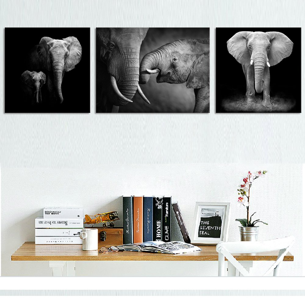 Amazon.com: Animal Canvas Wall Art Decor Black and White Elephant ...