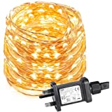 LE Waterproof 10m 100 LED Copper Wire Lights Power Adapter Included String Lights Warm White Fairy Starry Lights Decorative Firefly Lights for Party Wedding Garden and More