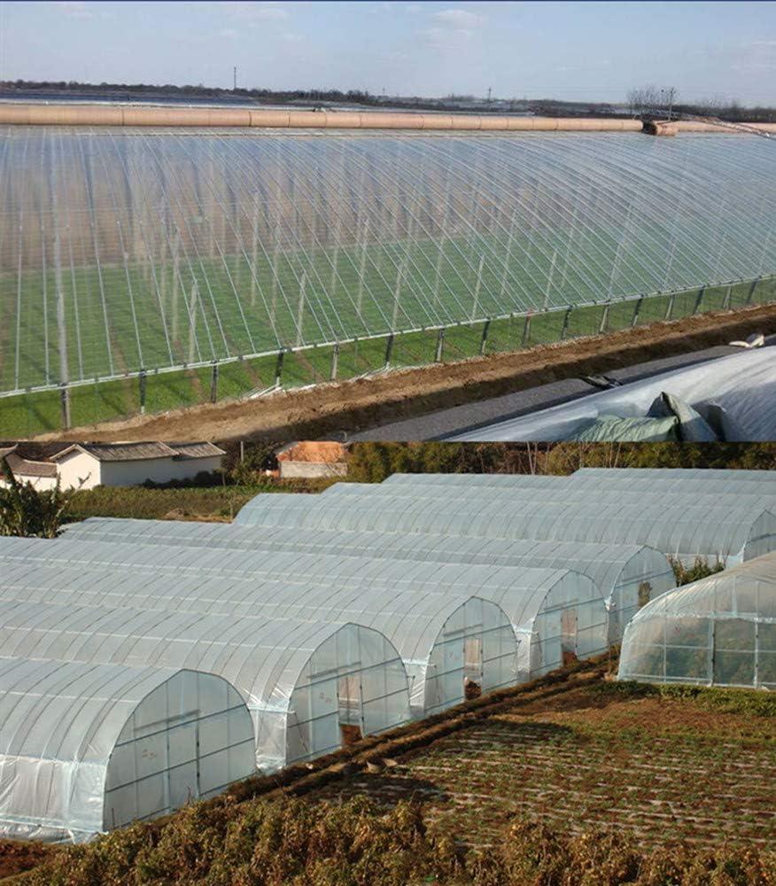 Mitef - Manta de plástico Transparente para Invernadero, Resistente a los Rayos UV, Cubierta para Plantas y Escarcha