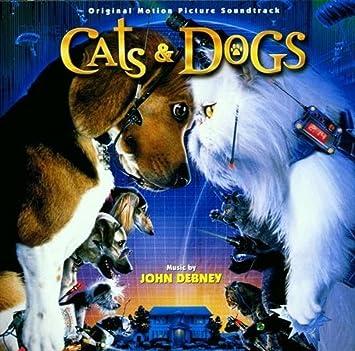 Como Perros Y Gatos -Cats & Dogs