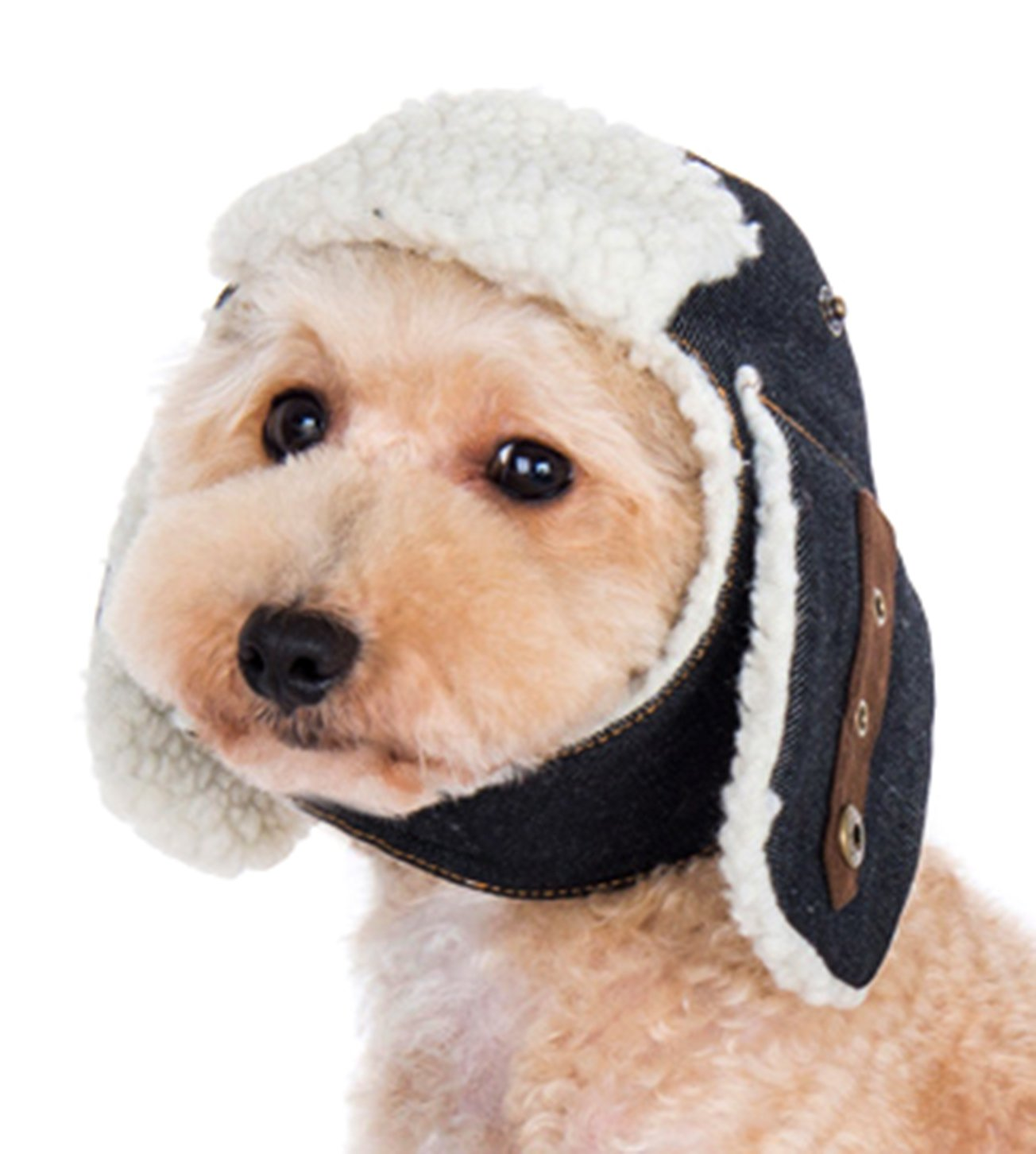 Dogo ''Trapper'' Hat For Cat Dog Puppy Pet (XL)