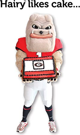 Fabulous Amazon Com Georgia Bulldogs Birthday Cake Greeting Cards Set Of Funny Birthday Cards Online Elaedamsfinfo