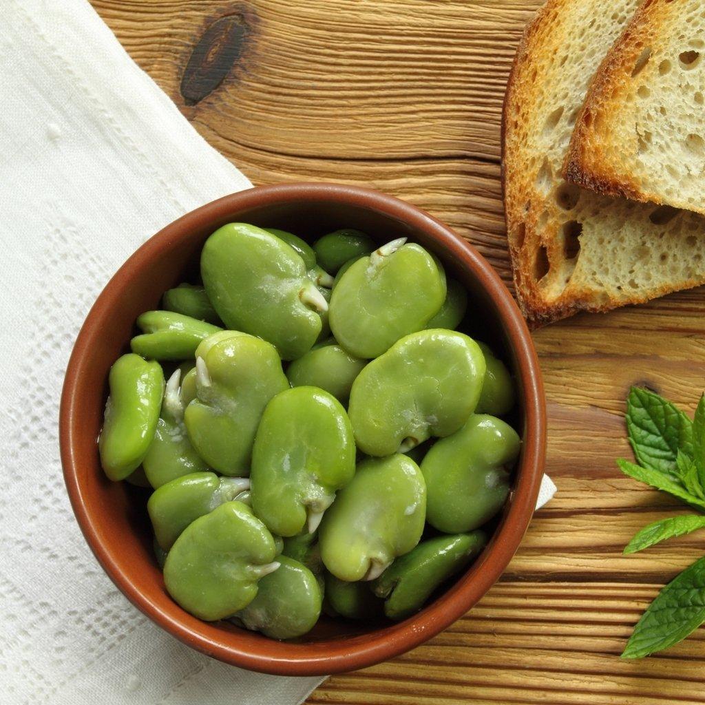 GROSEEDS - Vegetable Seeds, Broad Bean - Super Aquadulce, OV-BRB-01, 55 Seeds Minimum Per Packet.