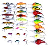 Aorace 30pcs Fishing Lures Kit Mixed including Minnow Popper Crank Baits With Hooks For Saltwater Freshwater Trout Bass Salmon Fishing