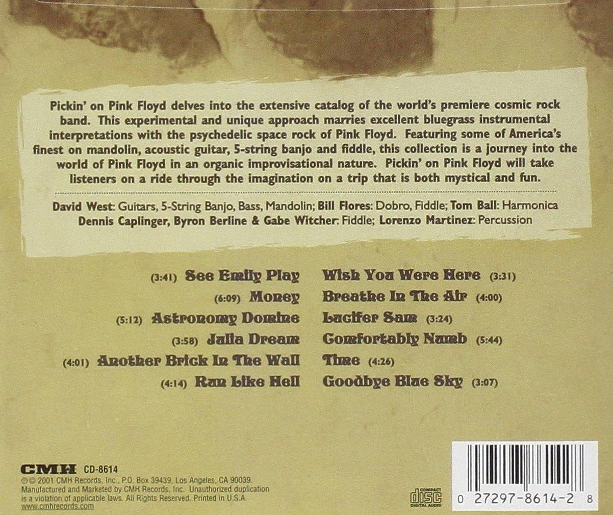 Pickin' On Pink floyd: A Bluegrass Tribute