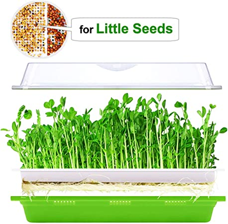 Seed Sprouter Tray with Lid BPA Free Bean Sprout Grower Germination Kit Extra Small Hole
