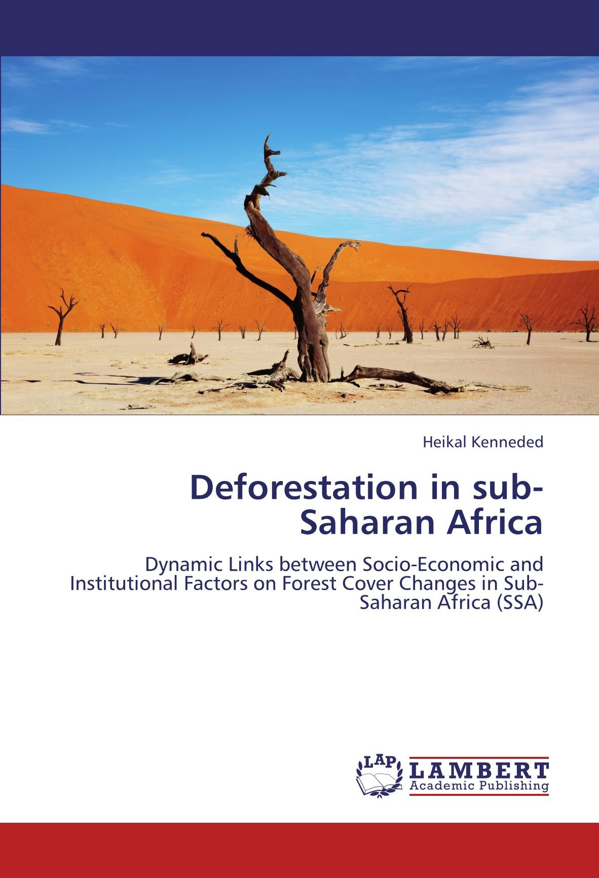 Download Deforestation in sub-Saharan Africa: Dynamic Links between Socio-Economic and Institutional Factors on Forest Cover Changes in Sub-Saharan Africa (SSA) PDF