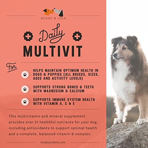 Multivitamin Chews Treats for Dogs – Daily Dog Vitamins – Great Nutrition for Picky Eaters, Dogs Love Them