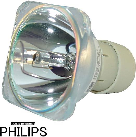 OPTOMA SP.8EH01GC01 - Bombilla de recambio PHILIPS: Amazon.es ...