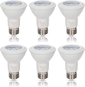 LED PAR20 Light Bulb 6W 38deg Spotlight Dimmable (6-Pack) by Simba Lighting for Indoor Recessed Can, Range Hood and Outdoor PAR 20, 120V E26 Base, 40W to 50W Halogen Replacement, 3000K Soft White