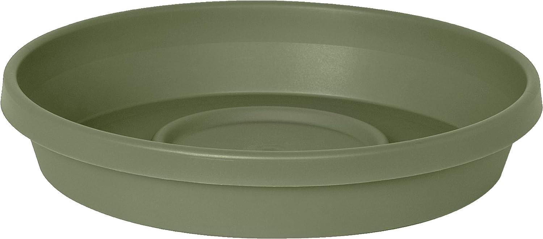 "Bloem Terra Plant Saucer Tray 20"" Living Green : Garden & Outdoor"