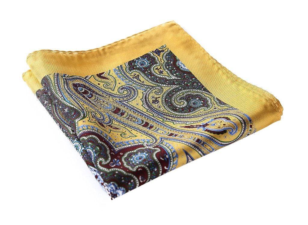 SetSense Men's Paisley Pocket Square Handkerchief N23G