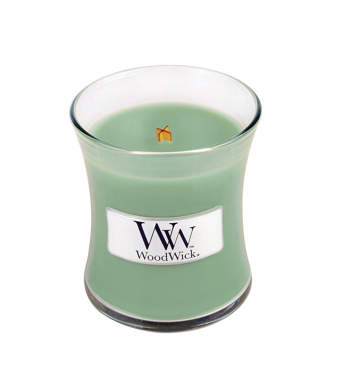 最高 ホワイトWillow B077XPKHZ2 Moss WoodWickミニ砂時計Jar Moss Candle Candle B077XPKHZ2, おつまみと酒専門店。ますや:7a0f14e4 --- a0267596.xsph.ru