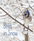 Best in Snow (Weather Walks)