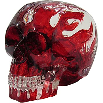 Amazon.com: Clear Flame Skull Head Shift Knob / Decor