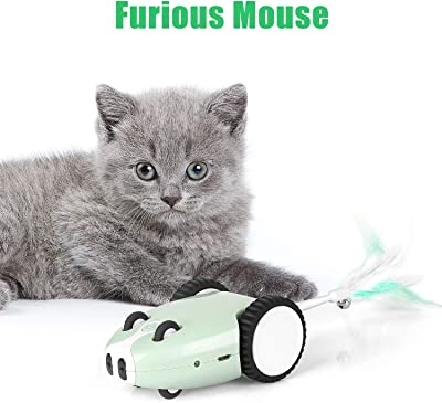 Motorized Robotic Cat Toy